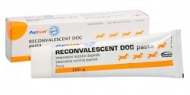 Orion Pharma Aptus Reconvalescent DOG pasta 100 g